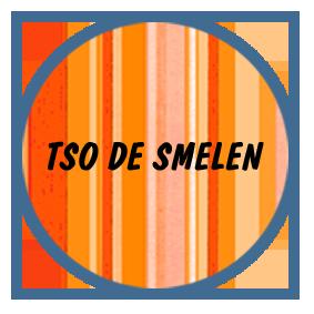 TSO De Smelen
